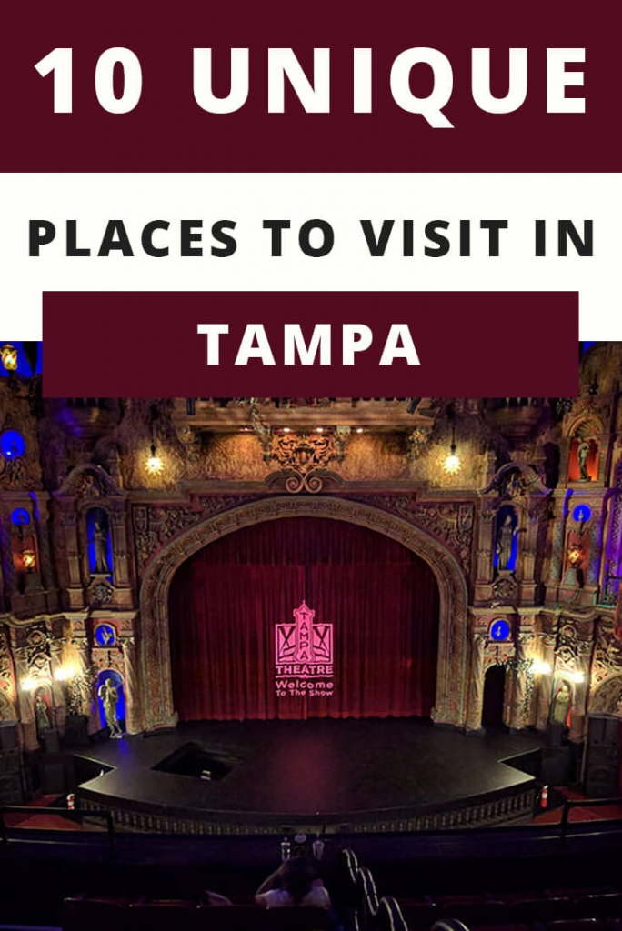 10 Unique Places to Visit in Tampa