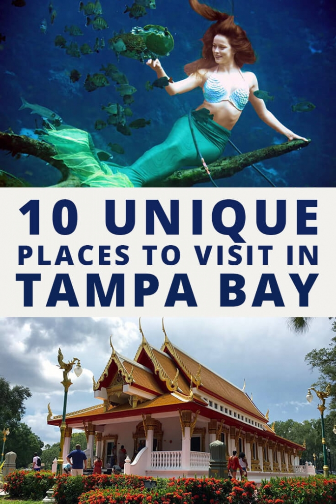 Unique Places to Visit in Tampa Bay