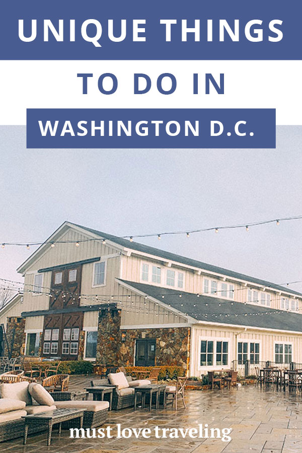 Unique Things to Do in the Washington D.C. Area