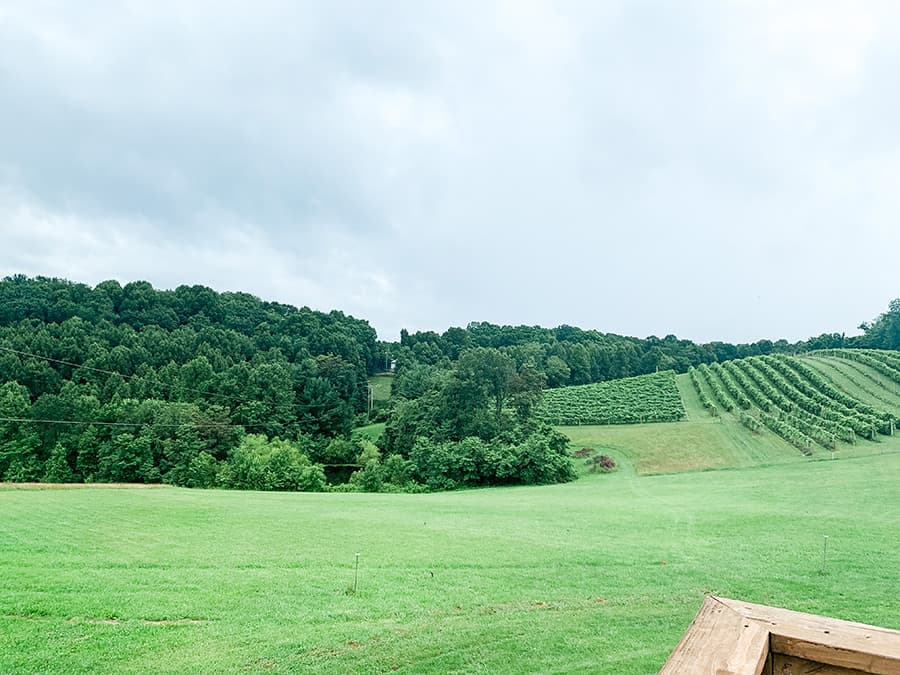 view from the balcony at the winery loft